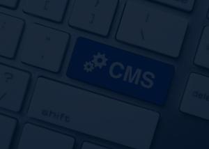 webentwicklung cms