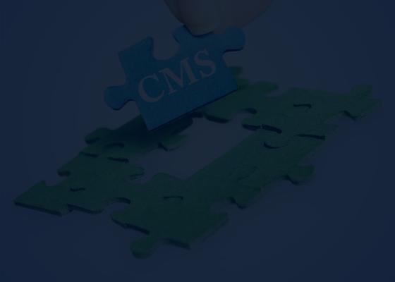 webentwicklung unternehmen cms